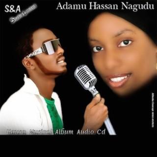 Adamu Nagudu - Boomplay