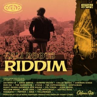 Cali Roots Riddim 2020 - Boomplay