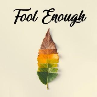 Fool Enough - Boomplay