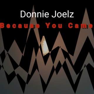 Because You Came - Boomplay