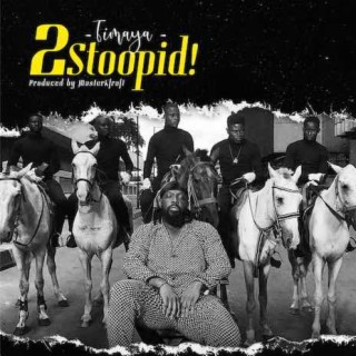 2 Stoopid - Boomplay