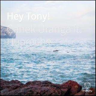 Hey Tony! - Boomplay