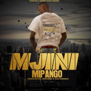 Mjini Mipango - Boomplay