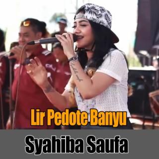 Lir Pedote Banyu - Boomplay