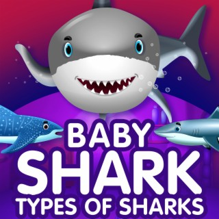 Baby Shark - Types of Sharks - Boomplay