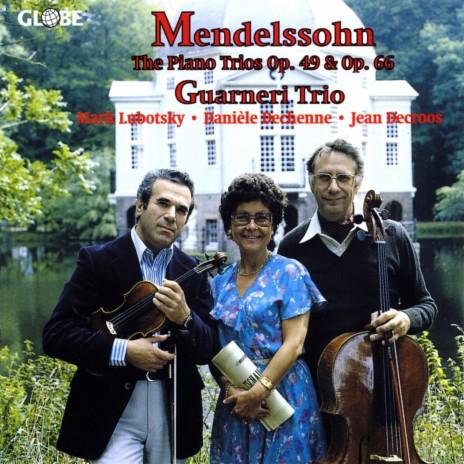 Piano Trio No. 1 in D Minor, Op. 49: II. Andante con moto tranquillo
