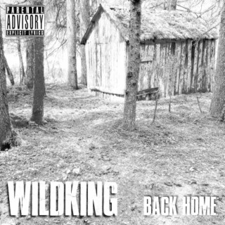 Back Home - Boomplay