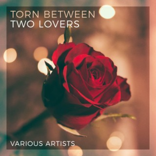 Torn Between Two Lovers - Various Artists - Boomplay