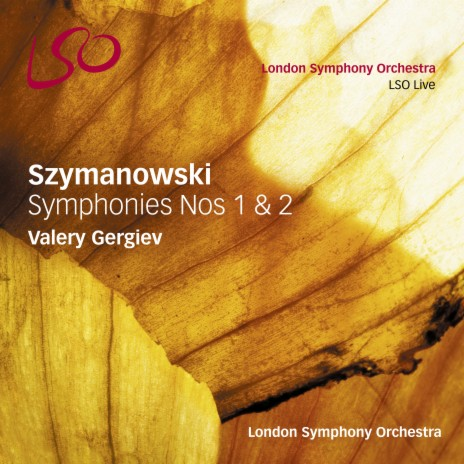 Symphony No. 1 in F Minor, Op. 15: II. Finale Allegretto con moto. Grazioso ft. Valery Gergiev