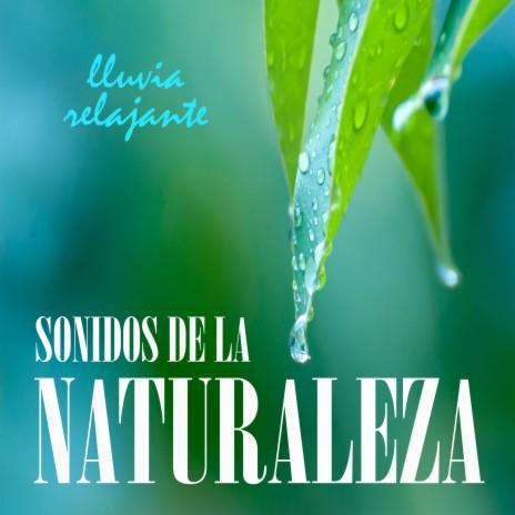 Sonidos de la Naturaleza: Lluvia Relajante, Pt. 07 ft. Lluvia para Dormir & Sueño Profundo Club