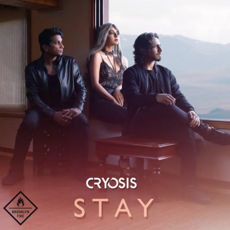 Stay (Original Mix)