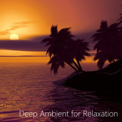 Relax Sleep ft. Meditation Relax Sound-Boomplay Music