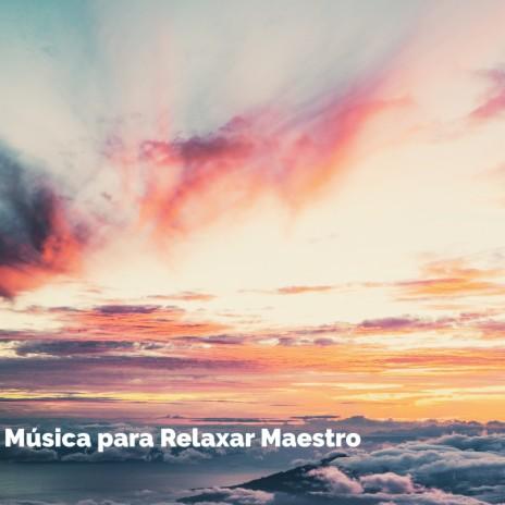 Silver Lining ft. Música para Meditar y Relajarse & Música Relajante para Perros-Boomplay Music