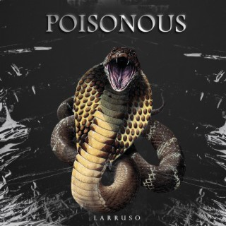 Poisonous-Boomplay Music