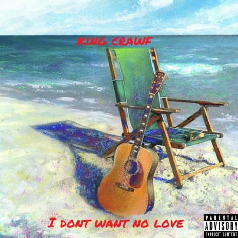 I Dont Want No Love