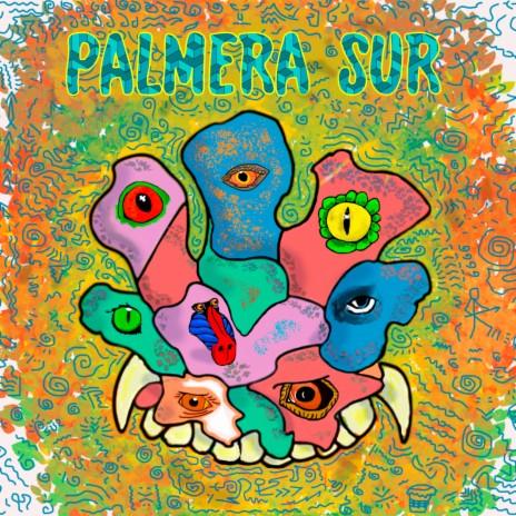 Palmera Sur