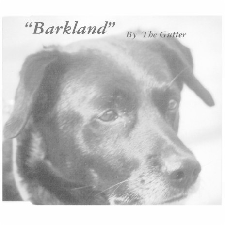 The Ballad of Frankie Randall