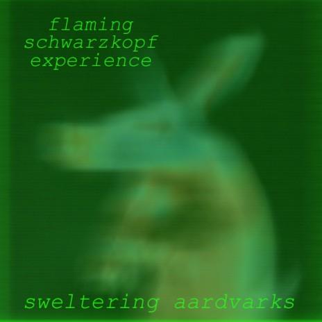 Sweltering Aardvarks 2