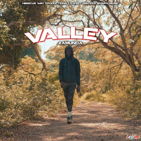 Valley-Boomplay Music