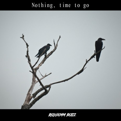 Nothing, Time to Go-Boomplay Music