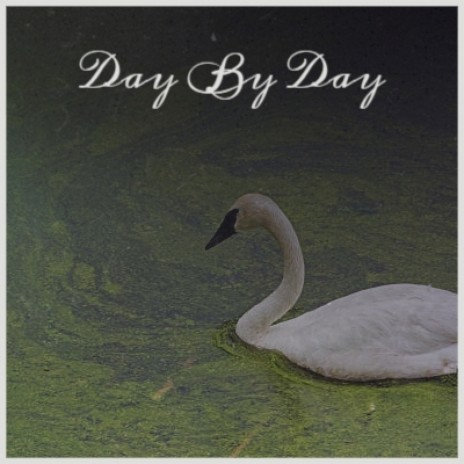 Day By Day-Boomplay Music