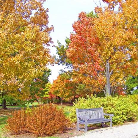 Autumn Leaves Me Blue