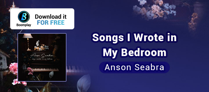 Songs I Wrote in My Bedroom - Boomplay