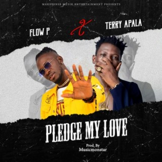 Pledge My Love (feat. Terry Apala) - Boomplay