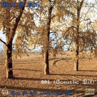 Moments Of Life Vol. 4 (Acoustic Mix) - Boomplay