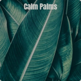 Calm Palms - Boomplay