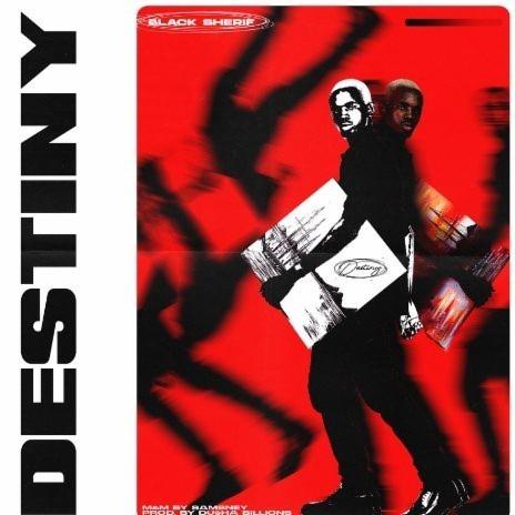 Destiny-Boomplay Music