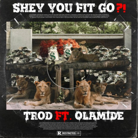 Shey You Fit Go?! ft. Olamide-Boomplay Music