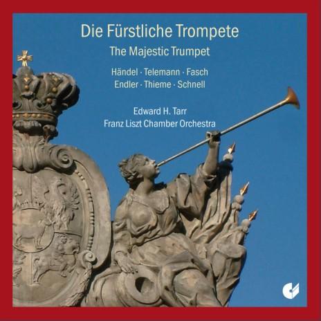 Concerto à 4 in D Major, TWV 43:D7: II. Vivace