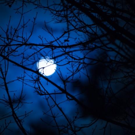 Goodnight Moon (Remastered)