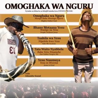 Omoghaka wa Nguru