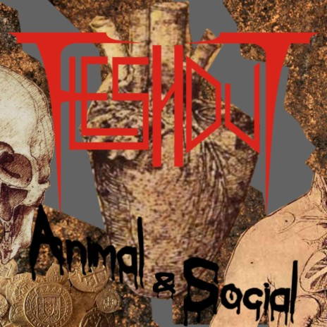 Animal & Social