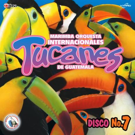 Tucanazo Mix 1: El Sonidito (El Ruidito) / Arremángala Arrempújala / El Perro Con Botas / Vamos a Bailar