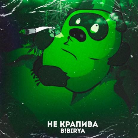 Не Крапива-Boomplay Music