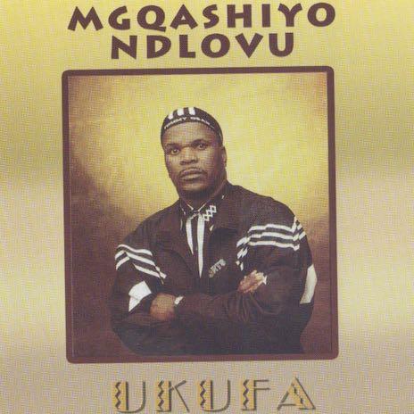 Ngiswele Amaphiko