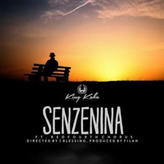 Senzenina - Boomplay