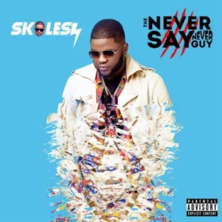The Never Say Never Guy - Boomplay