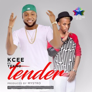 Tender (feat. Tekno) - Boomplay