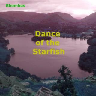 Dance of the Starfish - Boomplay