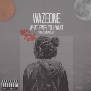 What Ever You Want - Boomplay