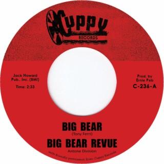 Big Bear - Boomplay
