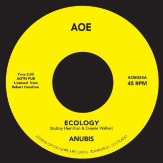 Ecology - Boomplay