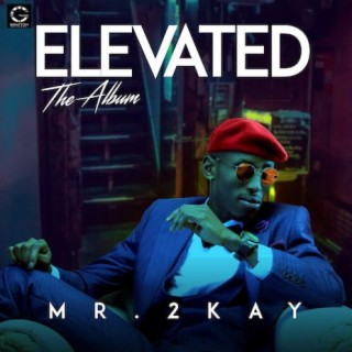 Elevated (The Album) - Boomplay