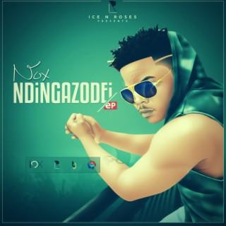 Ndingazodei - Boomplay