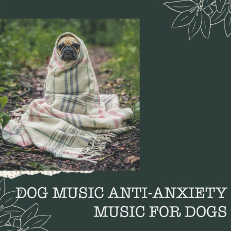 Mellow Condition ft. Music for Pets Library & Jazz Music Therapy for Dogs