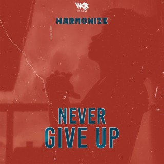 Never Give Up - Boomplay
